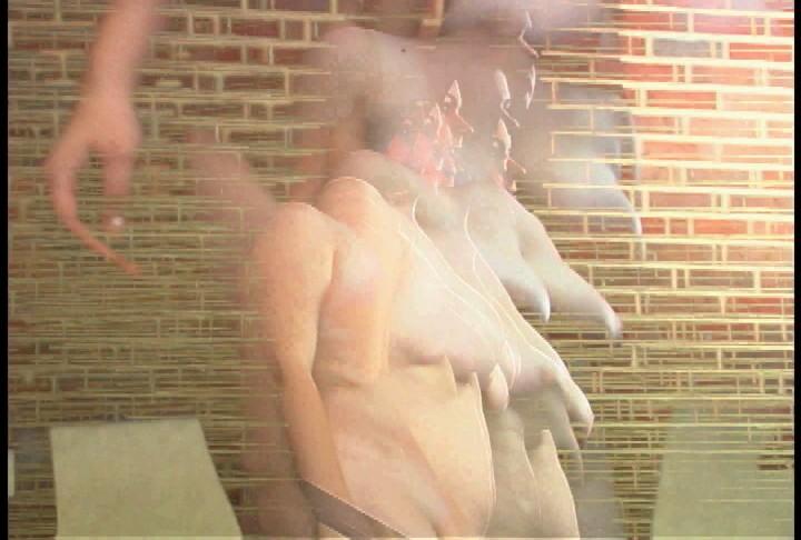 Nude Descending a Straircase, video, 6:30 (2007), $250