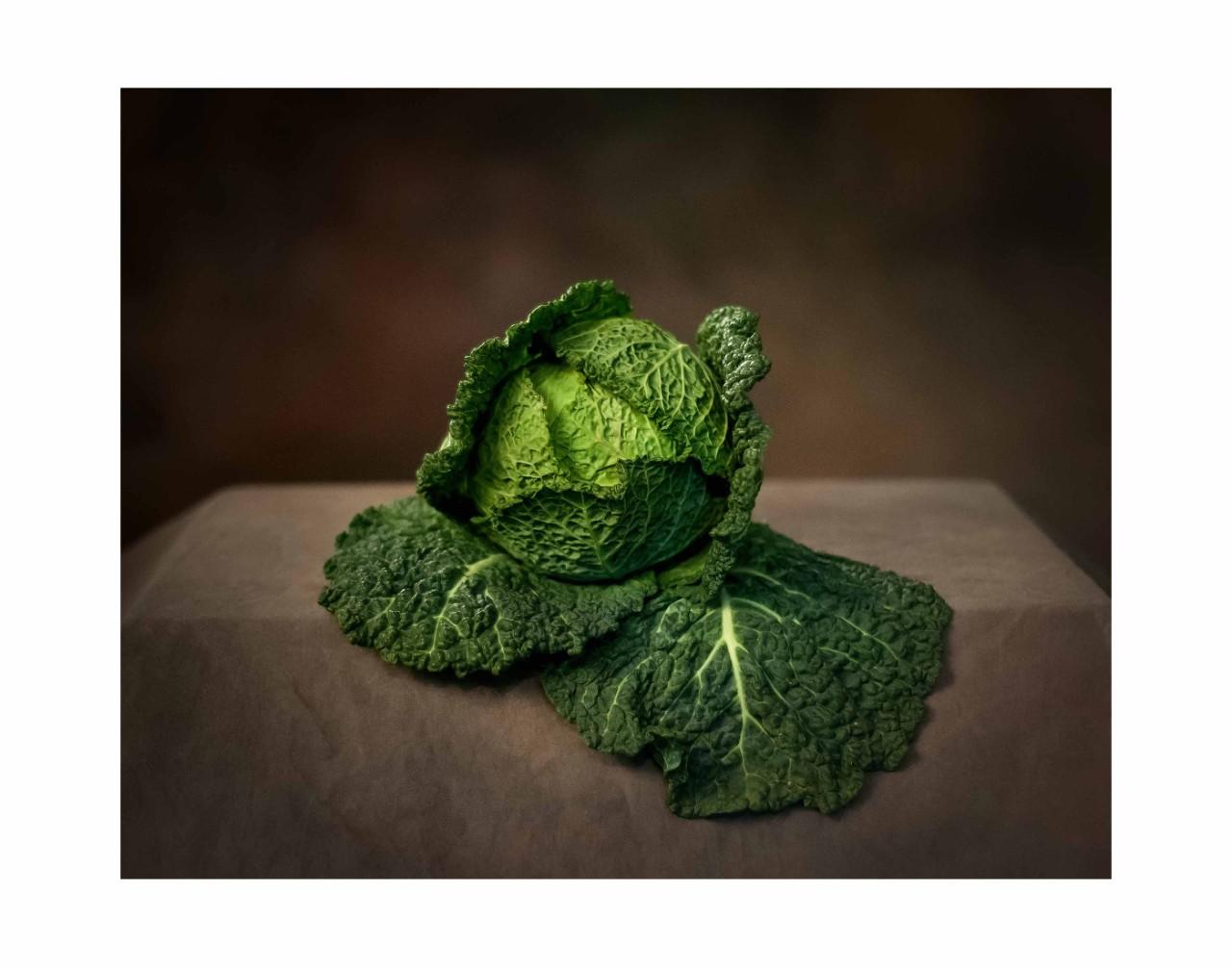 """2. Portrait of Cabbage, color photograph, 11"""" x 14"""" (2013)"""