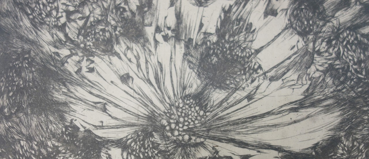 """4. Seed Explosion, intaglio print on mulberry paper, 15"""" x 16"""" (2015)"""