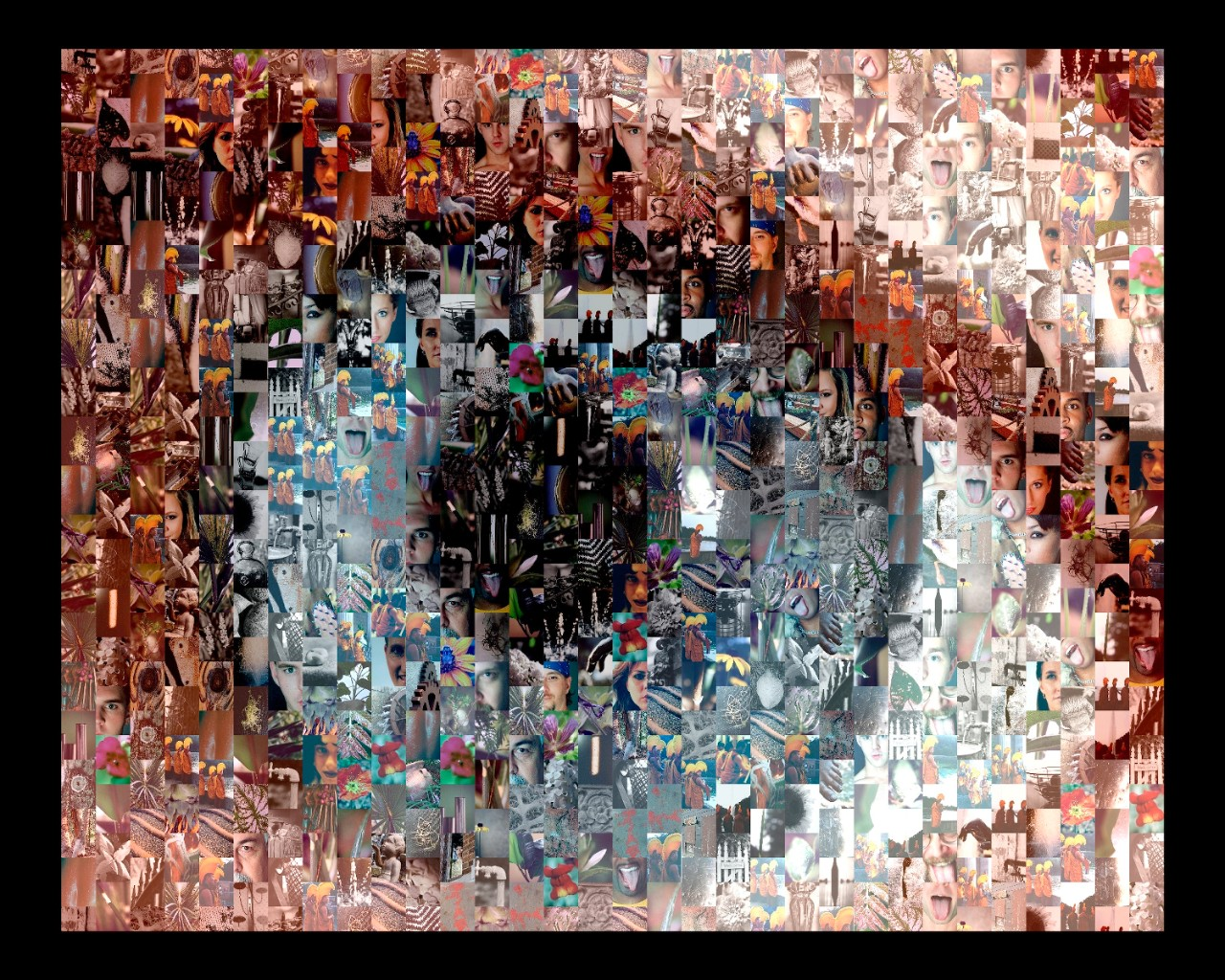 Photographic Art, The Eye of the Beholder (2002)