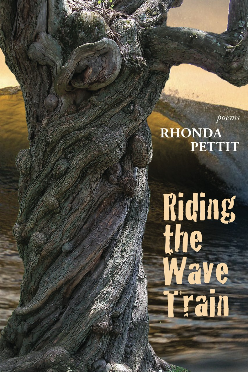 Riding the Wave Train book cover