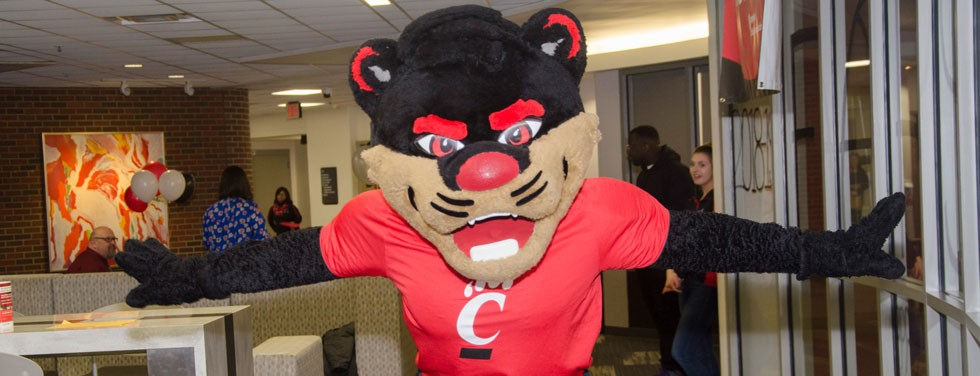 Bearcat mascot during admissions open house event